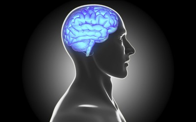 Brain Fitness Tips–How to improve your memory