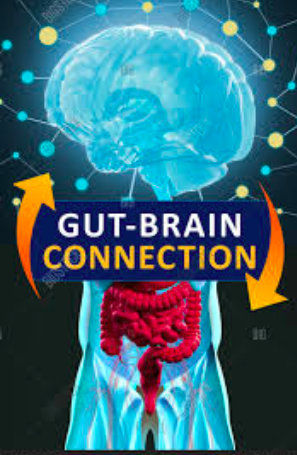 How Your Gut Can Make You Happy and Healthy! Interviews Galore!
